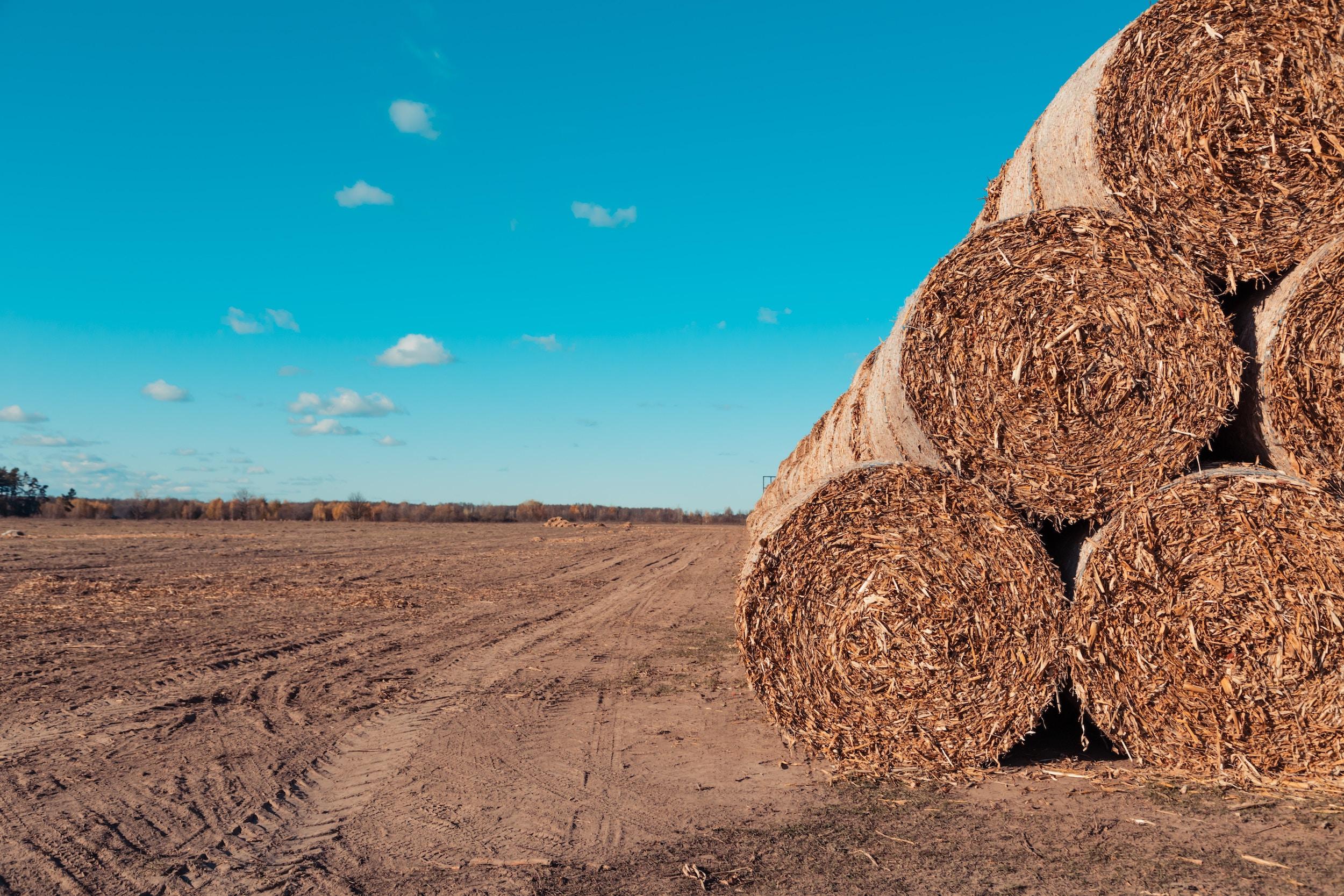 Zastosowanie ciągnika rolniczego w każdym gospodarstwie rolnym